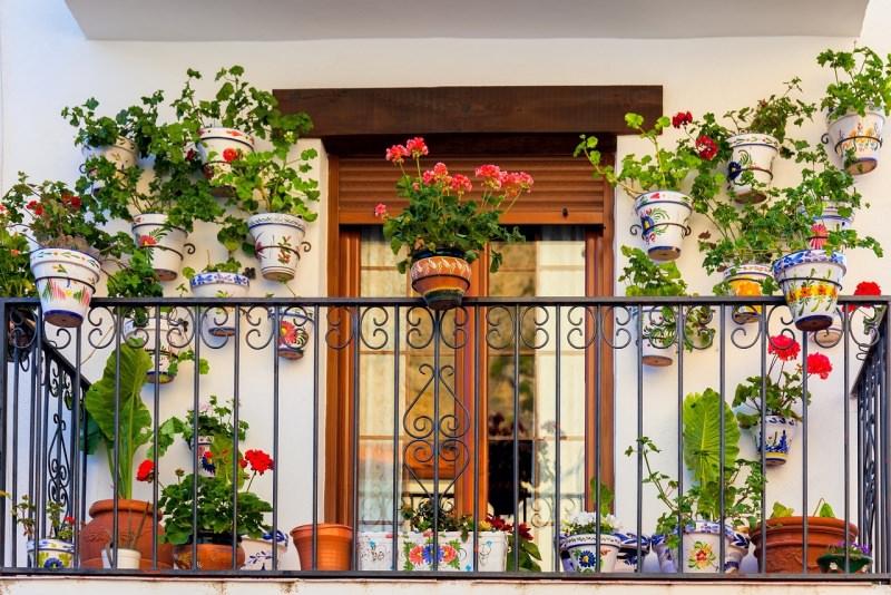 balcone con piante fiorite vasi gerani