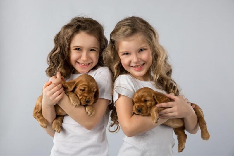 bambine tengono in braccio cuccioli di cane