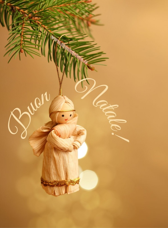 angelo decorazione albero di natale ramo abete