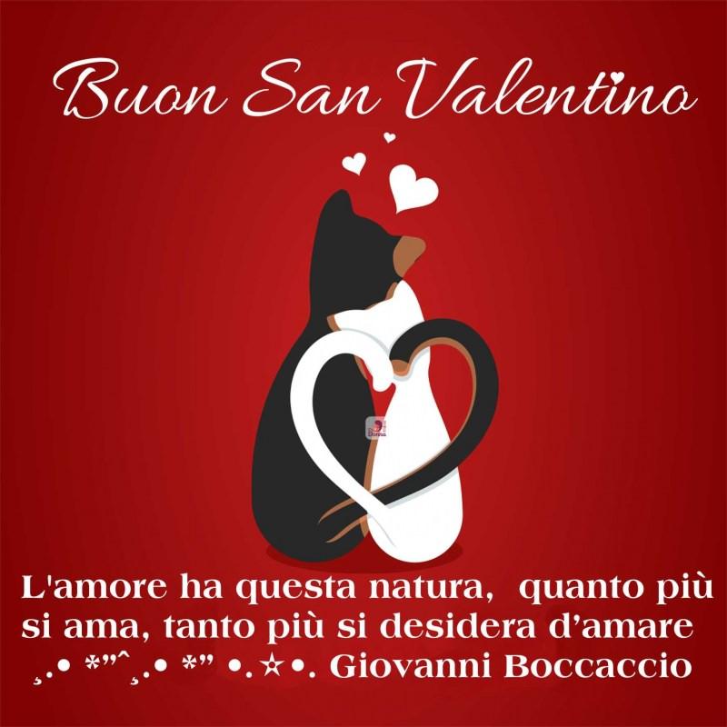 Messaggi d'amore, biglietti di auguri frasi speciali per San Valentino