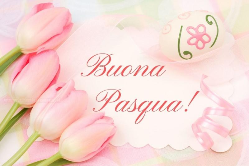 buona pasqua biglietto auguri tulipani rosa uovo decorato fiori nastro