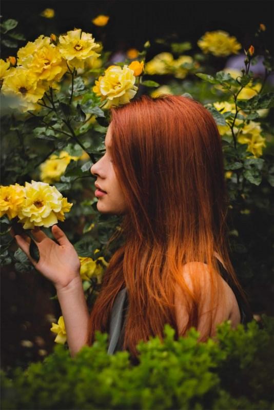 capelli rosso rame fiori rose gialle