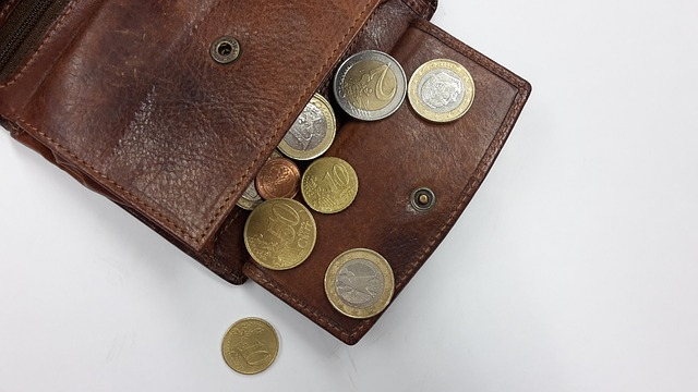 portafoglio soldi spese
