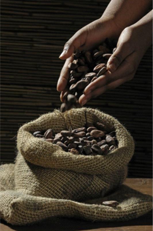 Dimagrire col cioccolato sacco juta fave di cacao mani uomo