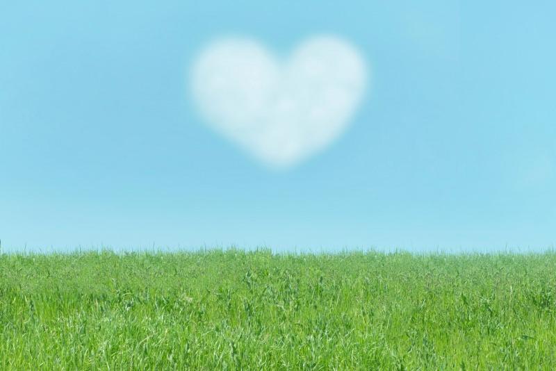 cuore di nuvola in cielo prato