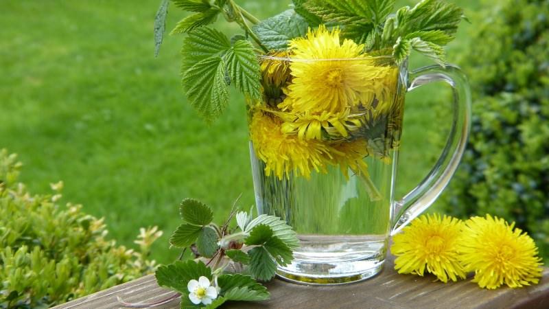 bicchiere fiori erbe detox tea