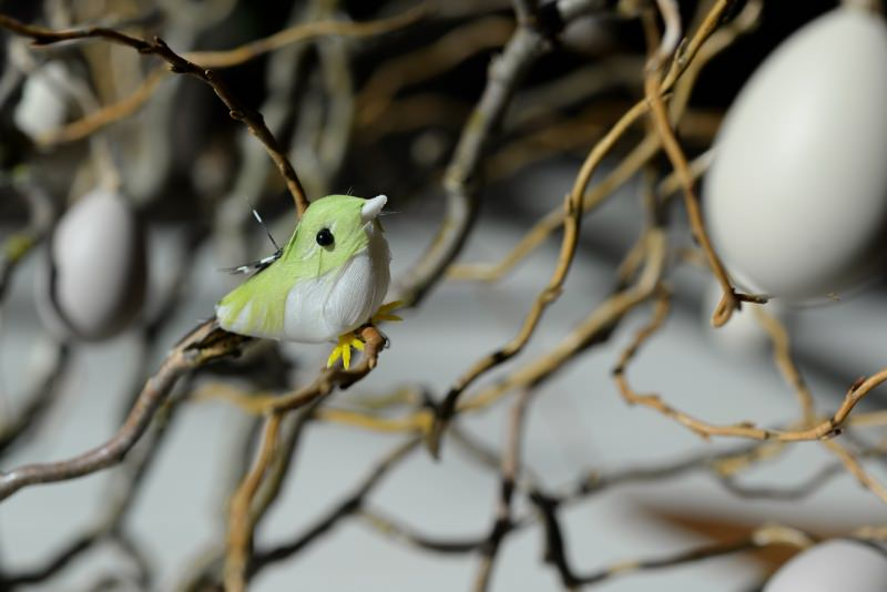 uccellino giocattolo su rami