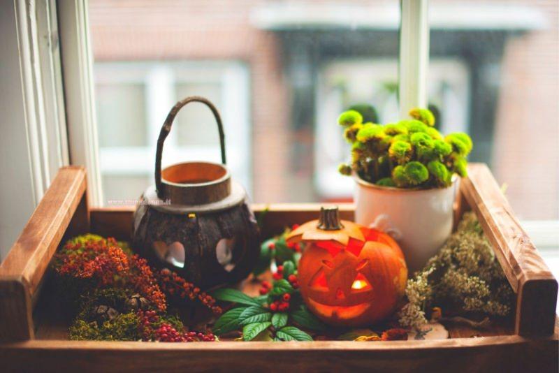 decorazioni halloween interno casa vassoio zucche intagliate lanterna candela foglie bacche tazza fiori