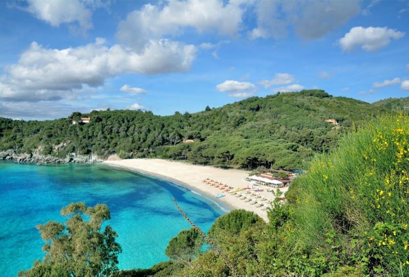spiaggia Fetovaia isola d'Elba lido bosco alberi