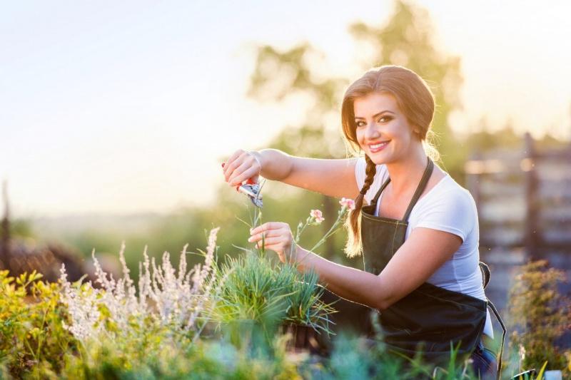 bella giovane donna sorriso capelli castani treccia cesoie giardinaggio fiori garofani rosa