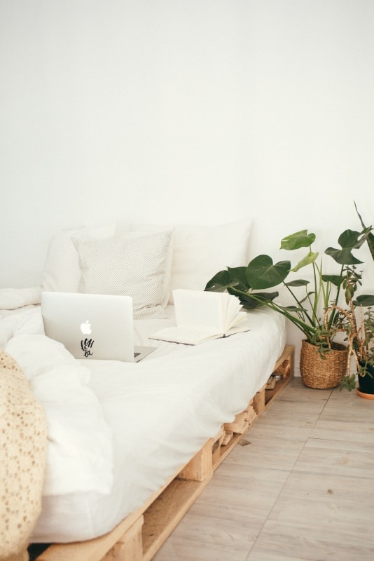 materasso pulizia pianta casa pulita