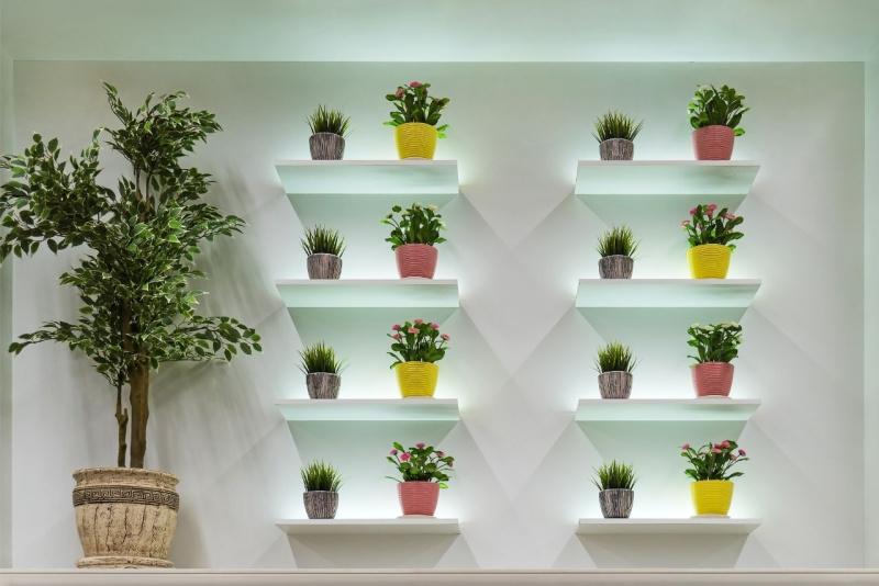 arredamento verde piante parete casa