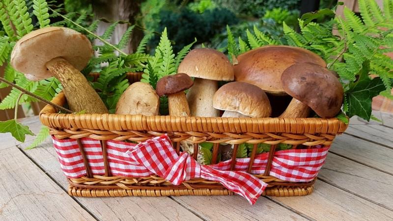 Menu di Natale Antipasti | Funghi ripieni di verdure cesto vimini champignon nastro quadri vichy rosso bianco foglie
