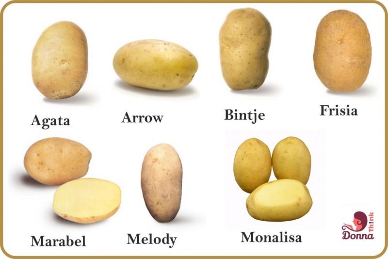 Come fare il purè di patate Contorno tradizione Ricetta facile che tipo di patate scegliere per preparare il purè? Qualità varietà patata Agata Arrow Bintje Frisia Marabel Melody Monalisa ingredienti