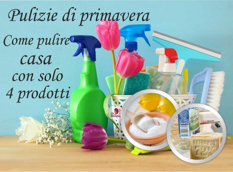 pulizie di primavera prodotti naturali fiori tulipano spruzzino spugne spazzola pulizia concetto