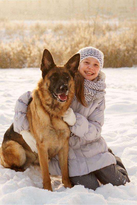 bambina Ragazza carina e pastore tedesco tra la neve inverno