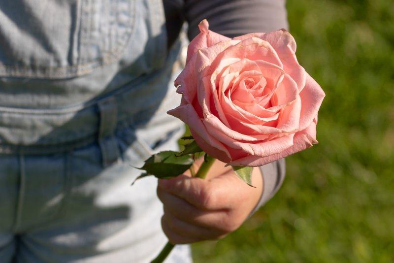 Festa della mamma, le migliori idee regalo per le mamme rosa