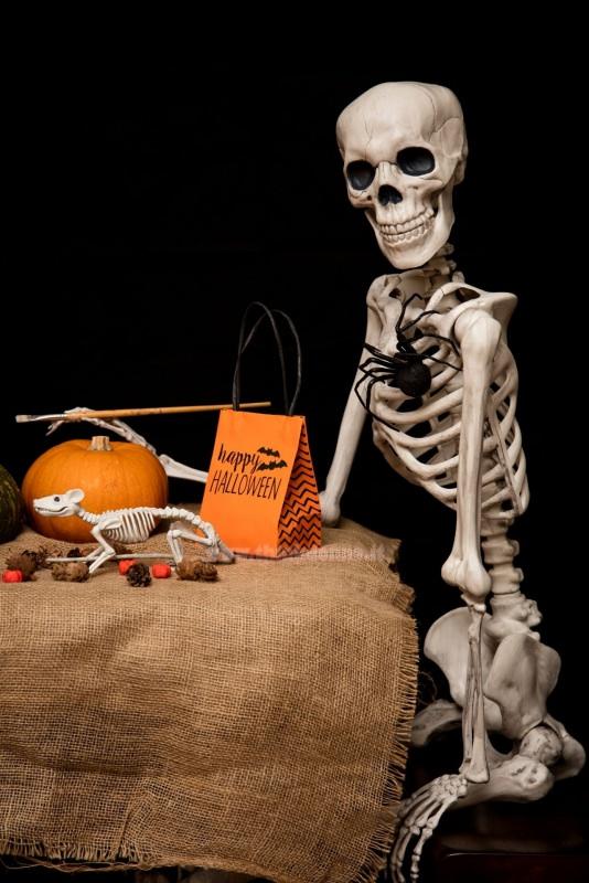 scheletro seduto a tavola sacchetto happy halloween zucca