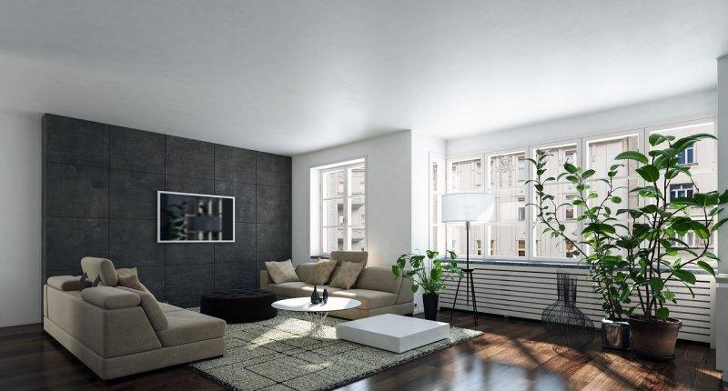 soggiorno accogliente e luminoso divani pianta verde finestre luce