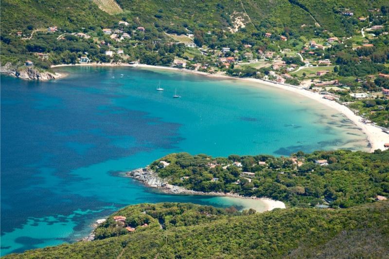 spiaggia di Procchio isola d'Elba bosco mare