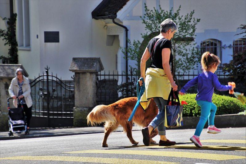 passeggiata nonna nipote cane