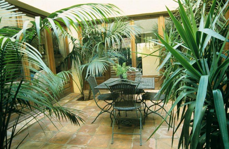 terrazzo giardino interno poante felce arredamento sedie tavolo ferro